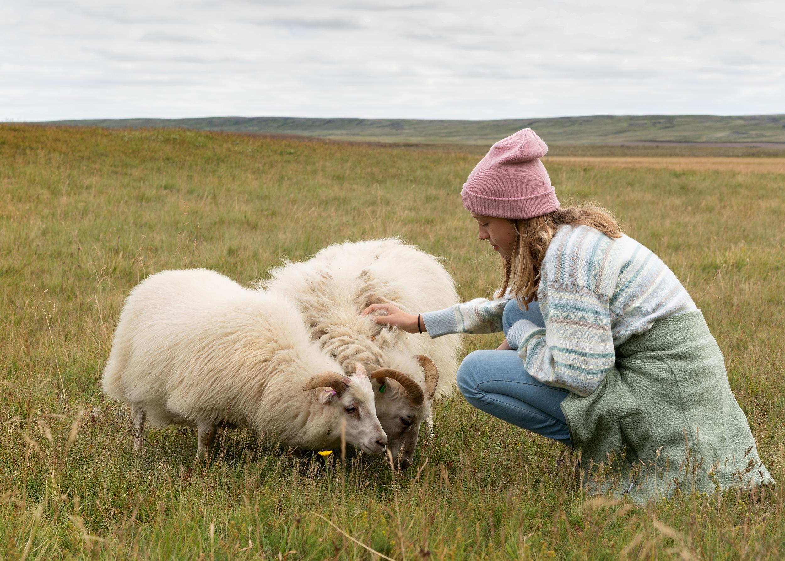 Kind mit 2 Schafen